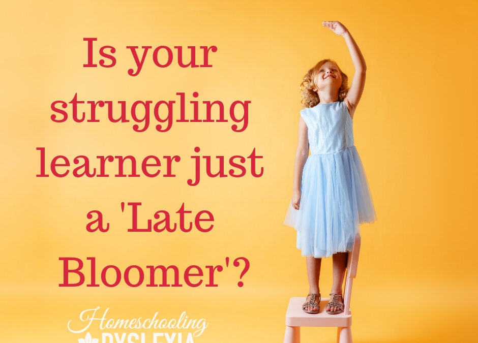 Late Bloomer or Struggling Learner?